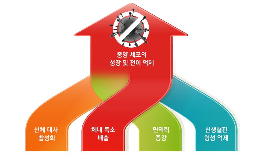 대전대학교 대전한방병원 동서암센터